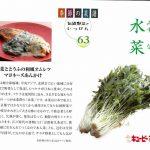 季節の菜譜63