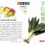 季節の菜譜75