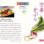 季節の菜譜37