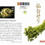 季節の菜譜41