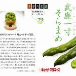季節の菜譜79